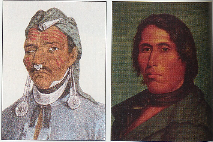 tecumseh and indian unity